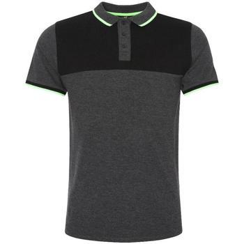 Kleidung Herren Polohemden Liverpool Fc  Anthrazit/Schwarz