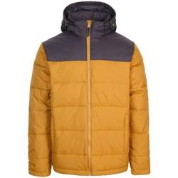 Kleidung Herren Jacken Trespass  Sandstein-farben