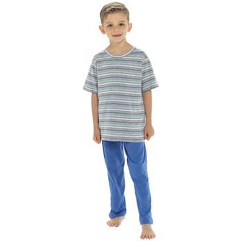 Kleidung Jungen Pyjamas/ Nachthemden Tom Franks  Marineblau
