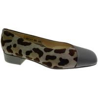Schuhe Damen Ballerinas Calzaturificio Loren LOA1117 grigio