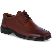 Schuhe Herren Derby-Schuhe & Richelieu Diverse Schnuerschuhe MAURICE-Schnürer 4120030/370 braun