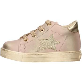 Schuhe Jungen Sneaker Falcotto - Polacchino rosa/oro SASHA-1M19 ROSA