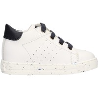 Schuhe Jungen Sneaker Falcotto - Polacchino bianco SALAZAR-1N07 BIANCO