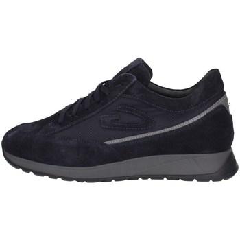 Schuhe Herren Sneaker Low Alberto Guardiani AGM007206 MARINE