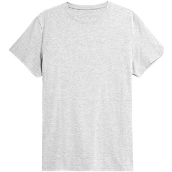 Kleidung Herren T-Shirts 4F TSM352 Grau