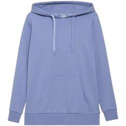 Kleidung Damen Sweatshirts 4F BLD352 Blau