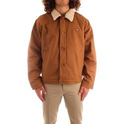 Kleidung Herren Jacken Dickies DK0A4XFYBD01 BRAUN