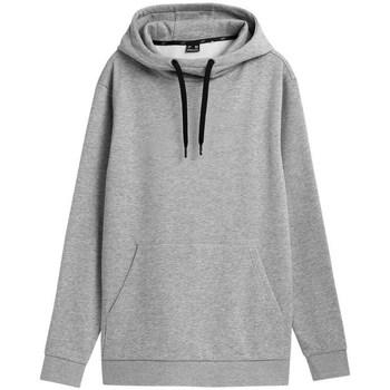 Kleidung Herren Sweatshirts 4F BLM352 Grau