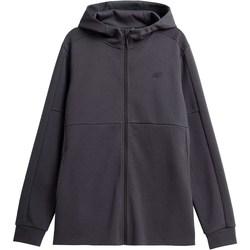 Kleidung Herren Sweatshirts 4F BLM010 Graphit