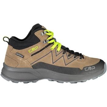 Schuhe Herren Fitness / Training Cmp Sportschuhe KALEEPSO MID HIKING SHOE WP 31Q4917 P773 Other