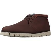 Schuhe Herren Stiefel CallagHan 86905C Brown