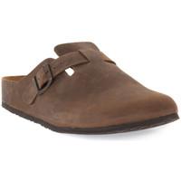 Schuhe Damen Pantoletten / Clogs Bionatura CAFFE VEGAS Marrone