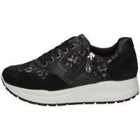 Schuhe Damen Sneaker Low Imac 807930 Schwarz