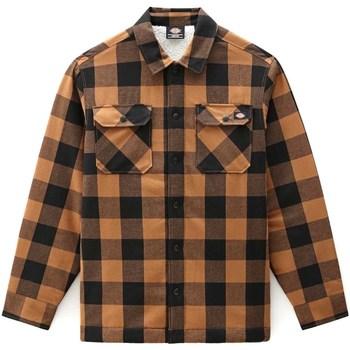 Kleidung Herren Langärmelige Hemden Dickies DK0A4XGRBD01 Braun