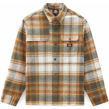 Kleidung Herren Langärmelige Hemden Dickies DK0A4XGUMGR1 Grün