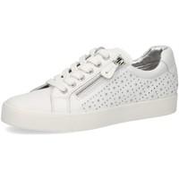 Schuhe Damen Sneaker Low Caprice Schnuerschuhe Da.-Schnürer 9-9-23202-24/102 weiß