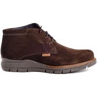 Schuhe Herren Boots Colour Feet OXFORD HIGH Braun