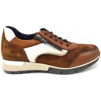 Schuhe Damen Sneaker Low Dorking 24 Hrs mod.8657 Other