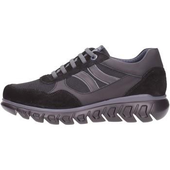 Schuhe Herren Sneaker CallagHan 12919 Multicolore