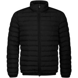 Kleidung Herren Daunenjacken Invicta 4431807/U Schwarz