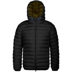 Kleidung Herren Daunenjacken Invicta 4431806/U Schwarz