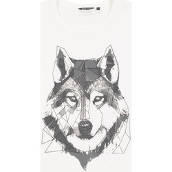 Kleidung Herren T-Shirts Antony Morato MMKS02072 FA100144 Weiß