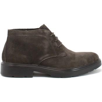 Schuhe Herren Boots IgI&CO 8100444 Braun