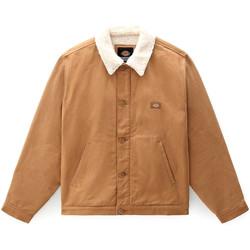 Kleidung Herren Jacken / Blazers Dickies DK0A4XGABD01 Beige