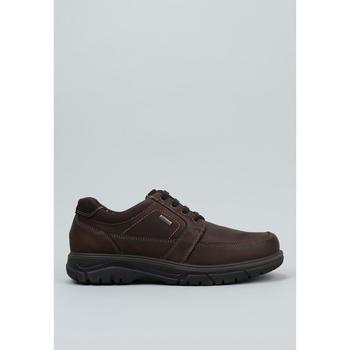 Schuhe Herren Derby-Schuhe Imac  Braun