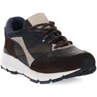 Schuhe Herren Multisportschuhe Exton COMBI 5 TERRA Marrone