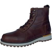 Schuhe Herren Stiefel Camel Active Pilgrim Mid Boot 23241353/C45 braun