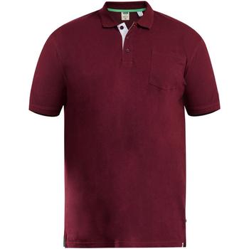Kleidung Herren Polohemden Duke  Multicolor
