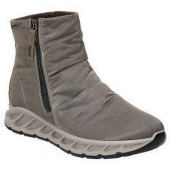 Schuhe Damen Low Boots IgI&CO BOTINES IGI & CO DOSGT 81799 SEÑORA PIEDRA Gris