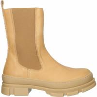 Schuhe Damen Low Boots Steve Madden Stiefelette Dunkelbeige