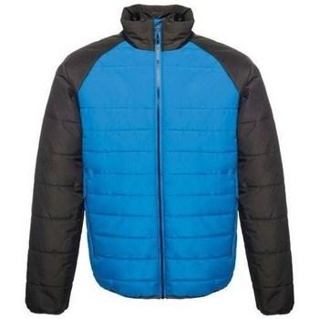 Kleidung Herren Jacken Regatta Glacial Blau