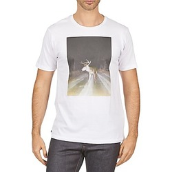 Kleidung Herren T-Shirts Kulte BALTHAZAR PLEIN PHARE 101931 BLANC Weiss