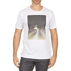 T-Shirts Kulte BALTHAZAR PLEIN PHARE 101931 BLANC