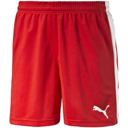 Kleidung Herren Shorts / Bermudas Puma Pitch Shorts Without Innerbrief Rot