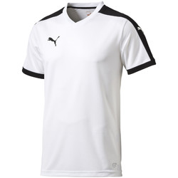 Kleidung Herren T-Shirts Puma Pitch Shortsleeved Shirt
