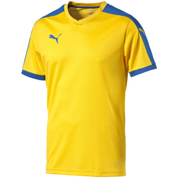 Kleidung T-Shirts Puma Pitch Shortsleeved Shirt