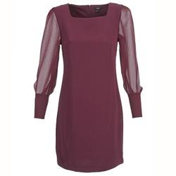 Kleidung Damen Kurze Kleider Mexx JAJAVA Bordeaux