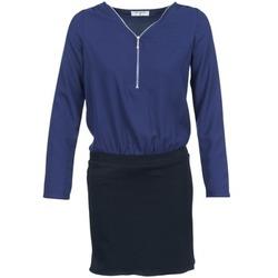Kleidung Damen Kurze Kleider Betty London DEYLA Schwarz / Marine