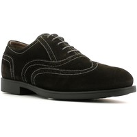 Schuhe Herren Derby-Schuhe Nero Giardini A503591U Lace-up heels Man Anthrazit Anthrazit