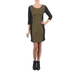 Kleidung Damen Kurze Kleider La City ROKAMIL Kaki / Schwarz