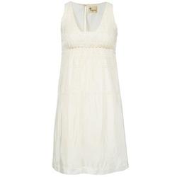 Kleidung Damen Kurze Kleider Stella Forest ARO015 Naturfarben