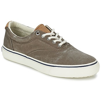 Schuhe Herren Sneaker Low Sperry Top-Sider STRIPER CVO Schokolade