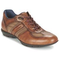 Schuhe Herren Derby-Schuhe Lloyd ARMAND Cognac