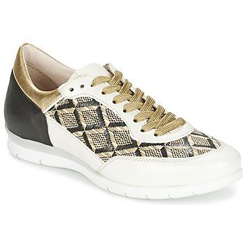 Schuhe Damen Sneaker Low Mjus FORCE Schwarz / Weiss / Goldfarben