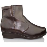 Schuhe Damen Low Boots Dtorres SAPPORO B5B4 BRAUN