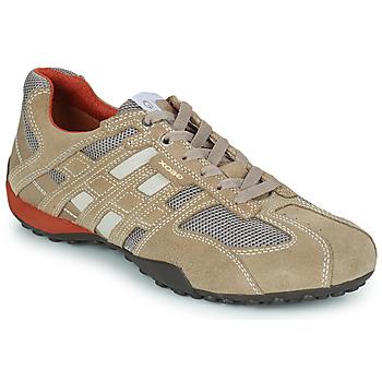 Schuhe Herren Sneaker Low Geox SNAKE Beige